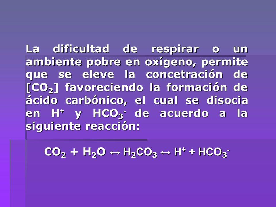 La dificultad de respirar o un ambiente pobre en oxígeno, permite que se eleve la concetración de [CO2] favoreciendo la formación de ácido carbónico, el cual se disocia en H+ y HCO3- de acuerdo a la siguiente reacción: